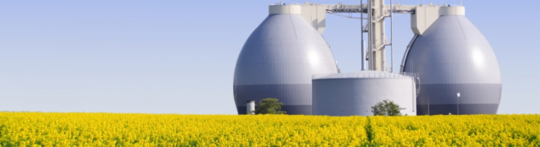 Comment est produit le gaz renouvelable ?