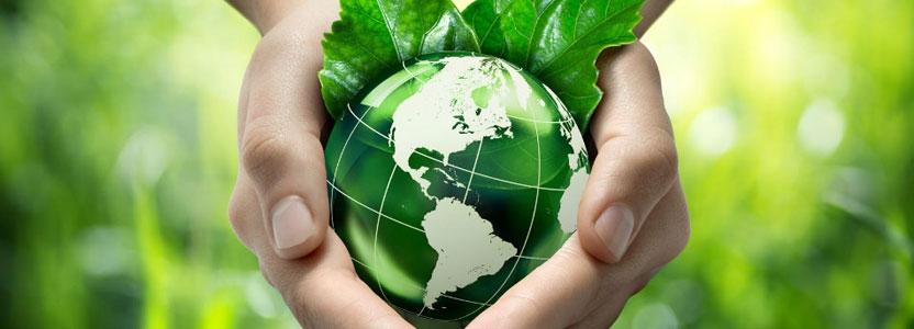 L'Écologie politique : une vision du monde réactionnaire ?
