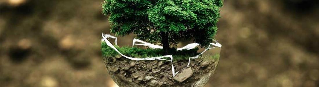 Pourquoi parle-t-on de grenelle d'environnement ?