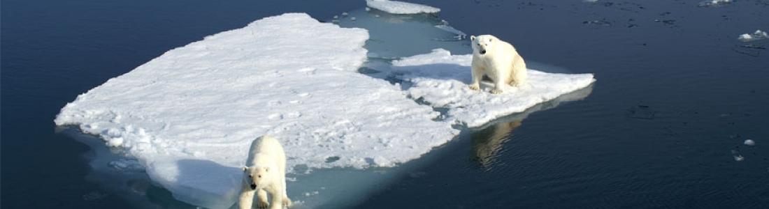 Réchauffement climatique – L'irrésistible croissance des émissions de CO2