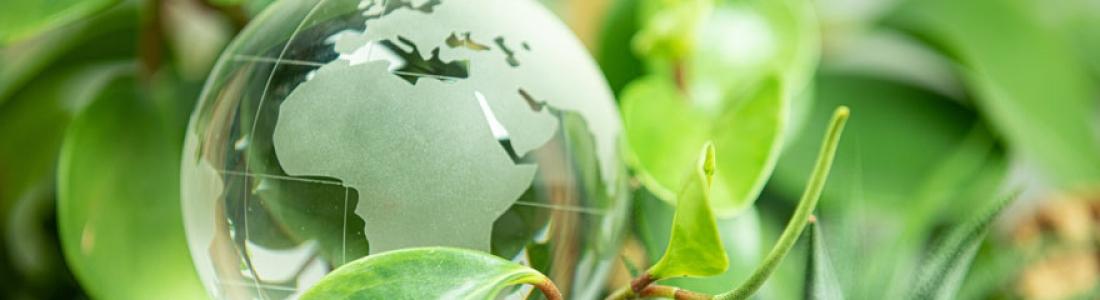 Quels sont les métiers du développement durable ?