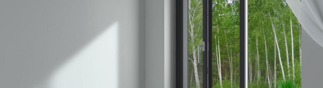 Quels sont les éléments de personnalisation d'une fenêtre ?