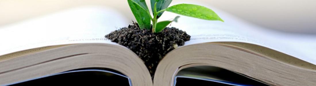 Quelle formation suivre pour obtenir une licence en écologie