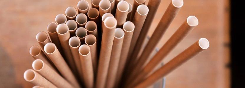 Les avantages d'utiliser des pailles en bambou